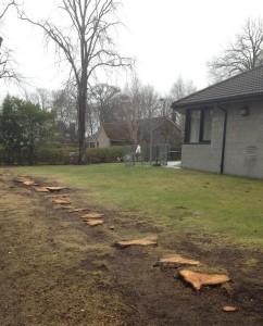 Tree stumps at Craigielea Avenue