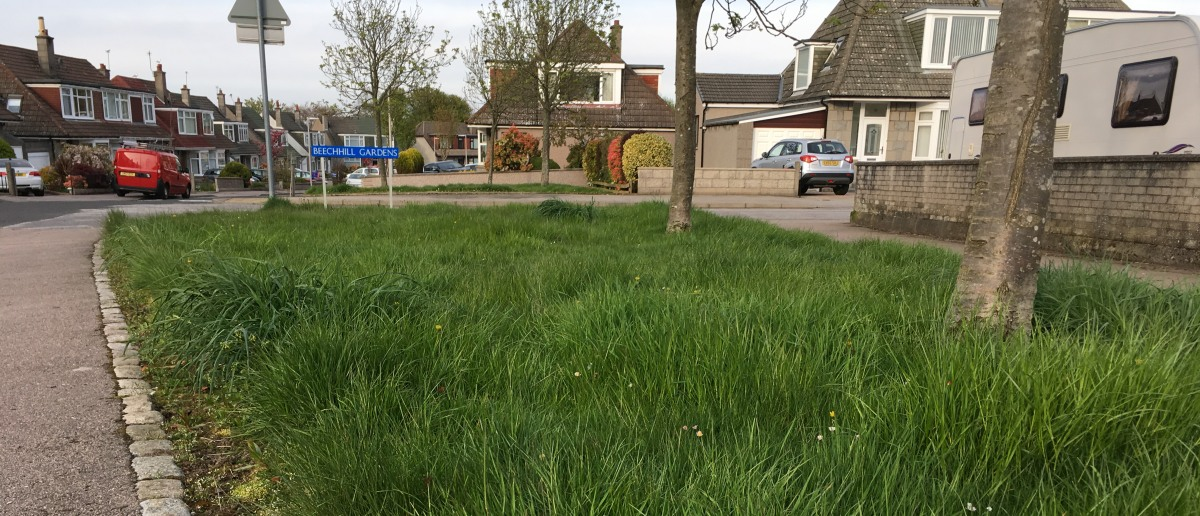 Photo of uncut grass at Airyhall Drive
