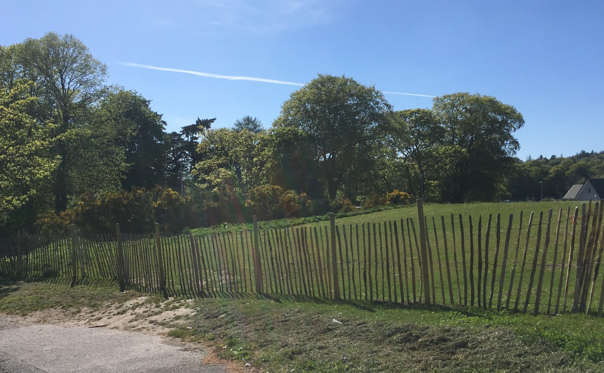 Photo of temporary fence at Auchinyell Road field